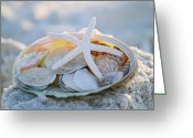 Seashells Greeting Cards - Every Grain of Sand Greeting Card by Melanie Moraga