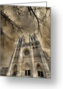 Washington Cathedral Greeting Cards - Evil Arms Greeting Card by Lori Deiter
