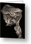 Plant Sculpture Greeting Cards - Evolve Greeting Card by Peter Cutler