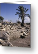 Foundations Greeting Cards - Excavations Of The Ancient Biblical Greeting Card by Richard Nowitz