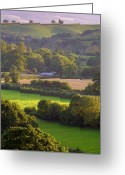 Devon Greeting Cards - Exe Valley evening Greeting Card by Neil Buchan-Grant
