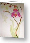 Pink Flower Branch Painting Greeting Cards - Exotic Dancer Greeting Card by Beverley Harper Tinsley