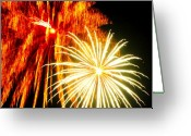 Explosives Greeting Cards - Explosive Flowers Greeting Card by Emily Stauring
