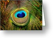 Tail Feather Greeting Cards - Eye of the Peacock Feather Greeting Card by Tracie Kaska
