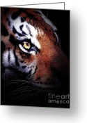 Cougar Greeting Cards - Eye of the Tiger in portrait Greeting Card by Wingsdomain Art and Photography