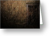 Sex Framed Prints Greeting Cards - Eyes Nestled Roots  Greeting Card by Jerry Cordeiro