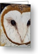 Hunter Greeting Cards - Eyes of the Guardian Greeting Card by Debbie LaFrance