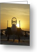 Nato Greeting Cards - F-15E Sunrise Portrait Greeting Card by Tim Grams