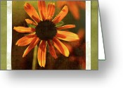 Orange And Green Greeting Cards - Face the Day Greeting Card by Bonnie Bruno