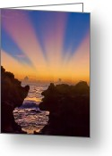 Light Greeting Cards Greeting Cards - Face the Morning Greeting Card by Debra and Dave Vanderlaan