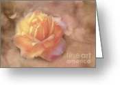 Morning Mist Images Greeting Cards - Faded Memories Greeting Card by Judi Bagwell