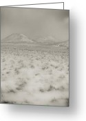 Winter Storm Greeting Cards - Faded storm Greeting Card by Scott Sawyer