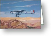 Murray Mcleod Greeting Cards - Fairey Long Range Greeting Card by Murray McLeod