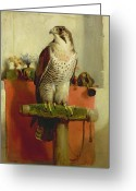 Sat Painting Greeting Cards - Falcon Greeting Card by Sir Edwin Landseer