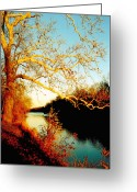 Abstract Landscapes Greeting Cards - Fall at the Raritan River in New Jersey Greeting Card by Christine Till