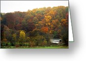 Nature And Wildlife Greeting Cards - Fall At Valley Forge Greeting Card by Skip Willits