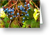Value Greeting Cards - Fall Berries Greeting Card by Karen M Scovill