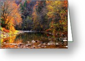 Trout Stream Greeting Cards - Fall Color Elk River Greeting Card by Thomas R Fletcher