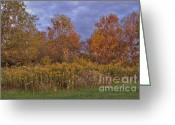 Barks Greeting Cards - Fall Color Prairie Greeting Card by Deborah Smolinske