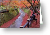 Tranquil Greeting Cards - Fall Colors Along Bending River In Kyoto Greeting Card by Jake Jung