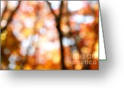 Abstract Bright Color Greeting Cards - Fall colors Greeting Card by Les Cunliffe