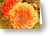 Pdx Greeting Cards - Fall Dahlias Greeting Card by Cathie Tyler