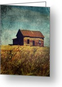 Rural Decay Prints Greeting Cards - Fall Day Greeting Card by Larysa Luciw