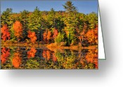 Fall Scene Greeting Cards - Fall For It Greeting Card by Emily Stauring