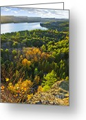Above Greeting Cards - Fall forest and lake top view Greeting Card by Elena Elisseeva