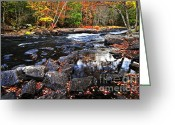 Boulder Greeting Cards - Fall forest and river landscape Greeting Card by Elena Elisseeva