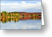 Orange Greeting Cards - Fall forest reflections Greeting Card by Elena Elisseeva