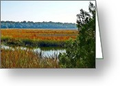 Driveways Greeting Cards - Fall Gold Greeting Card by Jim Goldseth