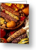 Persimmons Greeting Cards - Fall harvest Greeting Card by Garry Gay