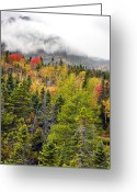 Baxter Park Greeting Cards - Fall in Baxter State Park Maine Greeting Card by Brendan Reals