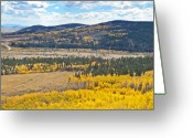 Black Elk Greeting Cards - Fall In Colorado Greeting Card by James Steele