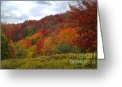 Pennsylvania Pyrography Greeting Cards - Fall in Pennsylvania Greeting Card by Ralf Broskvar