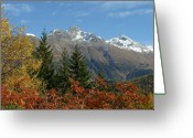 Glacier Greeting Cards - Fall in St. Moritz Greeting Card by Stan and Anne Foster