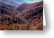 Tenn Greeting Cards - Fall In The Great Smokies Greeting Card by Skip Willits