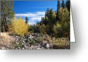 C Casch Greeting Cards - Fall In The Sierras Greeting Card by C Casch