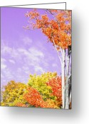 Purple Clouds Greeting Cards - Fall into Purple Greeting Card by Emily Stauring