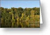 True Colors Greeting Cards - Fall is here Greeting Card by Joshua Fronczak