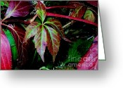 Reds Greeting Cards - Fall Is Here Greeting Card by Marsha Heiken