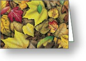 Leaf Painting Greeting Cards - Fall Leaf Study Greeting Card by JQ Licensing