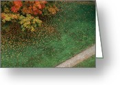 Walkways Greeting Cards - Fall Leaves Fall Onto Green Grass Greeting Card by Stephen Alvarez