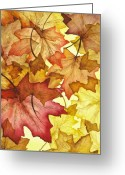 Warm Greeting Cards - Fall Maple Leaves Greeting Card by Christina Meeusen