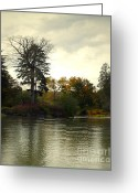Fall Scene Greeting Cards - Fall on the Snohomish River Greeting Card by Gwyn Newcombe