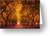 October Greeting Cards - Fall Orchard Greeting Card by Donni Mac