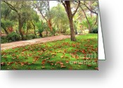 October Greeting Cards - Fall Park Greeting Card by Carlos Caetano