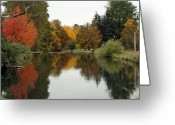 Fall Photographs Greeting Cards - Fall Reflections Greeting Card by Kami McKeon