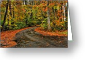 Autumn Roads Greeting Cards - Fall Road to Glory Greeting Card by Kenny Francis